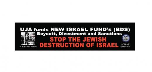 UJA-BDS-NIF-homepage